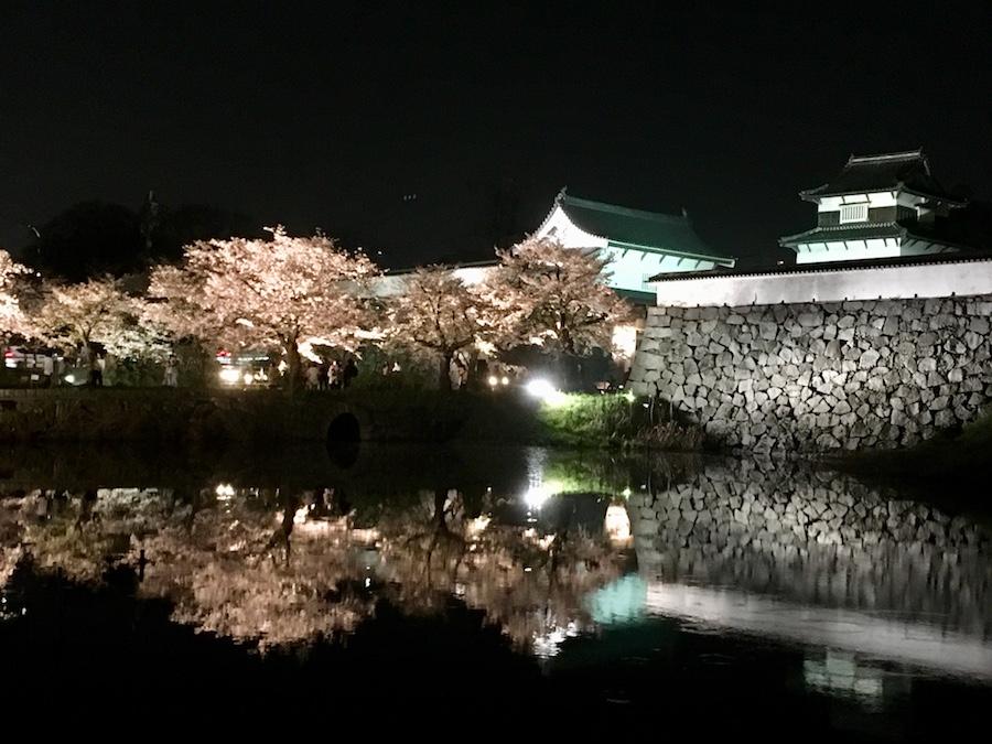 2018_hanami03
